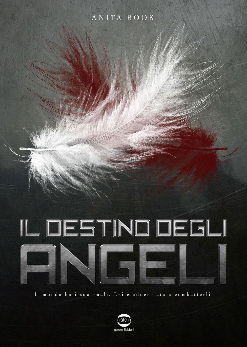 Il destino degli angeli