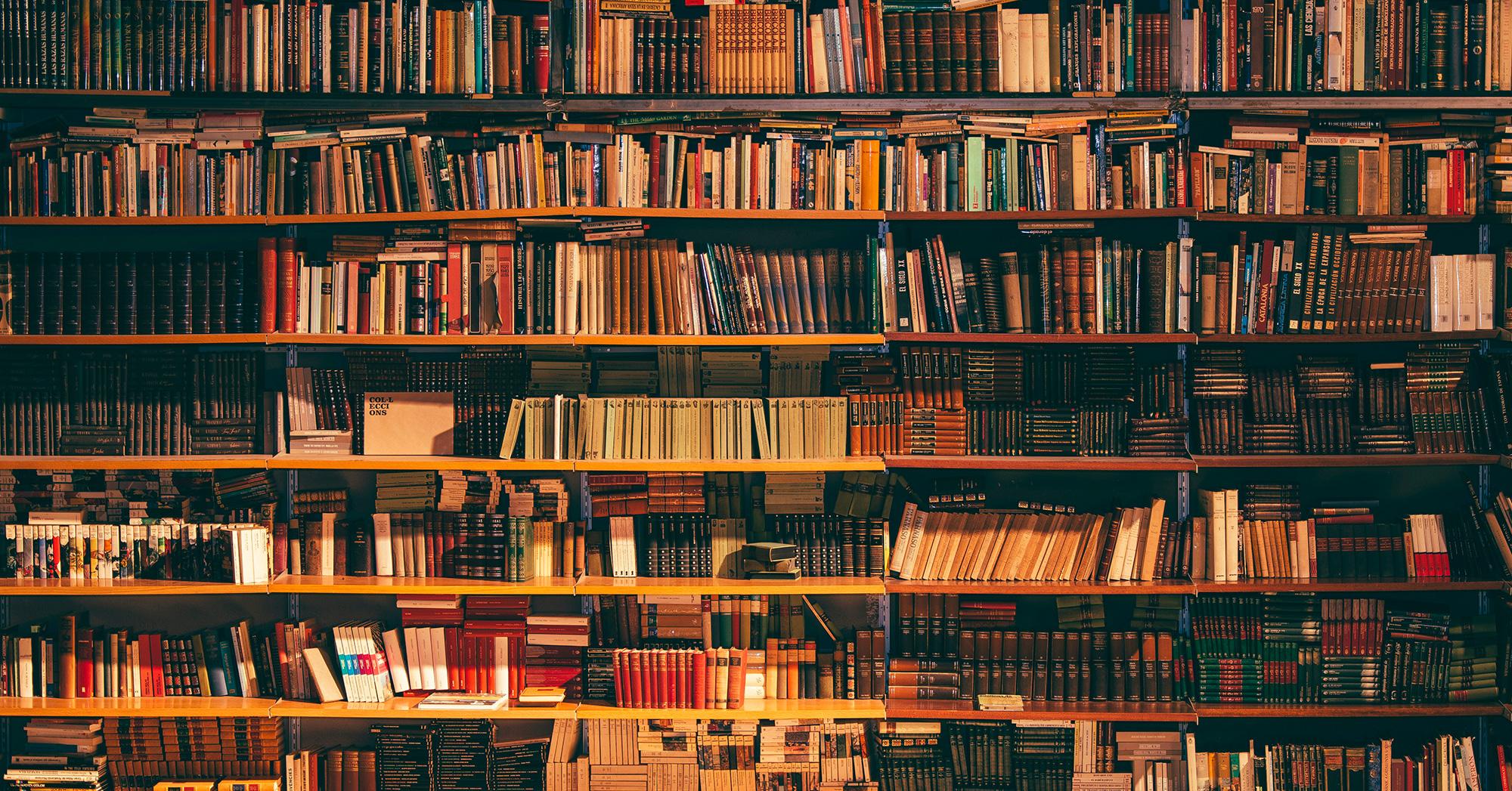 Vista frontale di una libreria in legno piena di libri